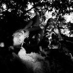 Saskia im Black Forest